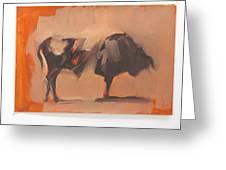 Toro Study Greeting Card