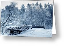 Winter White Forest Greeting Card