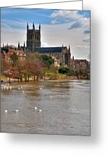 Worcester Cathedral And Swans Greeting Card