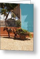 Cuba, Sancti Spiritus Province Greeting Card