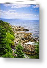 Atlantic Coast In Newfoundland Greeting Card
