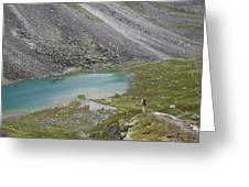 Backpacking In Alaska Talkeetna Greeting Card