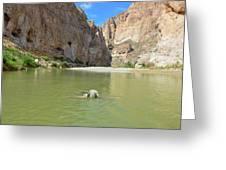 Exploring Big Bend National Park Greeting Card