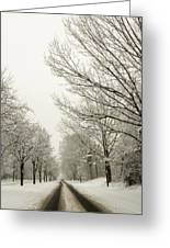 Snow Covered Road And Trees After Winter Storm Greeting Card