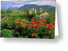 Usa, Colorado, Crested Butte Greeting Card