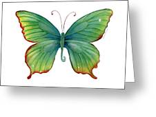 74 Green Flame Tip Butterfly Greeting Card
