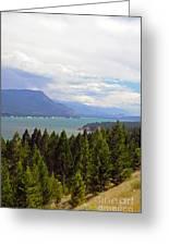 749p Columbia Lake Canada Greeting Card