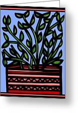 Sako Plant Leaves Red Green Blue Greeting Card