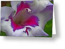 7817 Flower Greeting Card