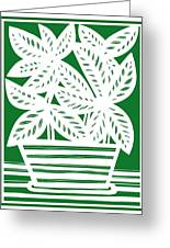 Stole Plant Leaves Green White Greeting Card