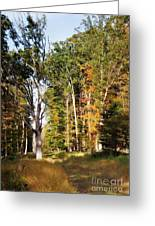 Autumn 2013 Greeting Card
