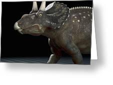 Dinosaur Diceratops Greeting Card