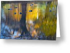 8 Ducks On Pond Greeting Card