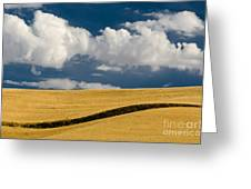 Farm Field Greeting Card