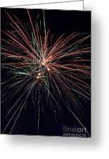 Independence Day Greeting Card by Matt  Davis