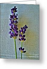 Lavender On Linen Greeting Card