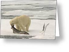 Polar Bear With Fresh Kill Greeting Card