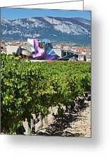 Spain, Basque Country Region, La Rioja Greeting Card