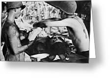 World War II New Guinea Greeting Card