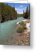 850p Bow River Canada Greeting Card