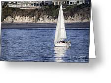 899 Pr Sailing Fun Greeting Card