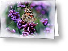 American Painted Lady Butterfly Greeting Card