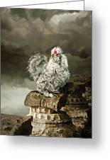 9. Cuckoo Angela Greeting Card