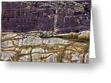 Devonian Slates Greeting Card