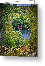 Fall Forest And Lake Greeting Card
