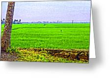 Green Fields With Birds Greeting Card