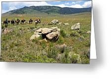 Rock Along The Trail Greeting Card
