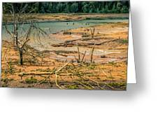 Nisqually Wildlife Refuge Greeting Card
