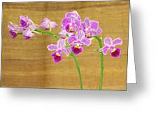 Purple Orchid-12 Greeting Card
