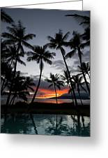 Silhouette Of Palm Trees At Dusk Greeting Card