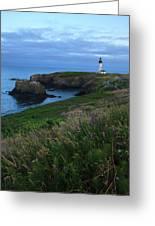 Usa, Oregon, Newport, Yaquina Head Greeting Card