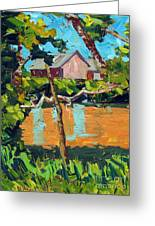 93 Degrees On The Eel Greeting Card by Charlie Spear