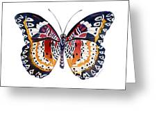 94 Lacewing Butterfly Greeting Card by Amy Kirkpatrick