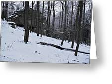 Verejova Rock Greeting Card