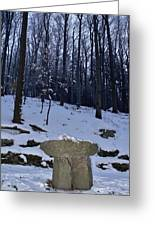Stone Altar In The Woods Greeting Card