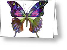 98 Graphium Weiskei Butterfly Greeting Card