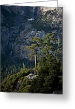A Backpacker Hikes Down A Trail Greeting Card