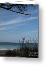 A Beautiful Day At A Florida Beach Greeting Card