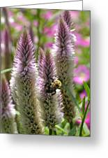A Bee's Work Is Never Done Abwndp Greeting Card