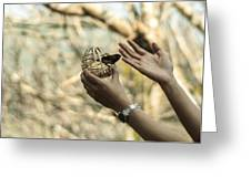 A Bird In The Hand Greeting Card