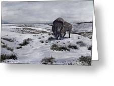 A Bison Latifrons In A Winter Landscape Greeting Card