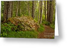 A Boulder In The Rainforest Greeting Card