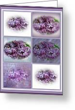 A Bouquet Of Lilacs Greeting Card