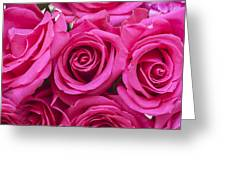 A Bouquet Of Pink Roses Greeting Card