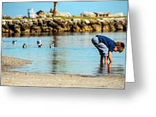 A Boy Searches The Water At Matheson Greeting Card