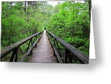 A Bridge To Somewhere Greeting Card
